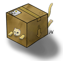 Box Kitty by lavitz6t7