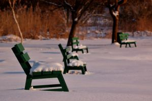 green benches at winter by torobala
