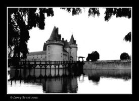 Chateau Sully-Sur-Loire by inessentialstuff