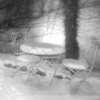 come in to my snowy garden by bindii