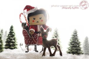 51-52 CTL2013 - Lilly wishes Happy Holidays by FeliDae84