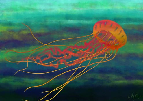 Jellyfish by FrolleinGrottenolm