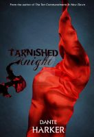 Tarnished Knight Book Cover by Designosaurus-Rex