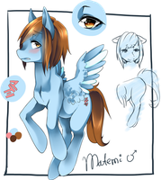 ponyfication- Matemi by matemi-i