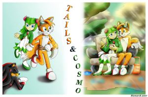 Tails and Cosmo by Bizmarck