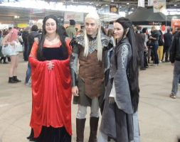 Legolas and Arwen at Japan Touch 2016 by AloiInTheSky
