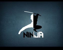 Ninja - wallpaper by bharani91