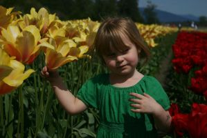My youngest in the Tulips by iamkjelstrup