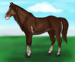 Unnamed Horse by arbutusbreedery