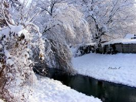 Winter 2009 II by gold-rose