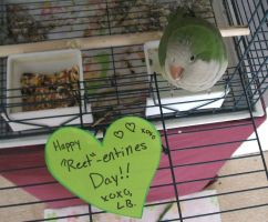 Happy 'Reet'-entines Day by Scartato