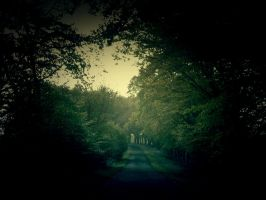 The Road by louise25