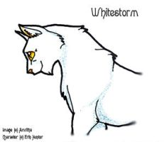 Whitestorm by Amritha