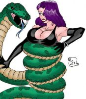 Copy Cat Vs. Large Snake by Woo-Plays
