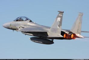 173rd Oregon ANG F-15 at Sentry Eagle 2011 by GeneralTate
