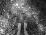 feet by livdrummer