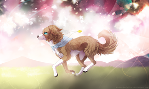 On my way to brighter days by LiaBorderCollie