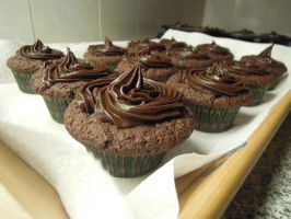 Chocolate Fudge Cupcakes by NessaArnatulie