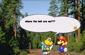 Koops and Mario are lost by Ibukers