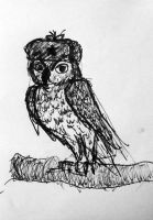 Great horned owl in an ushanka by tommy-tommerson