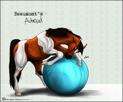 BS Admiral -SOLD- by Baringa-of-the-Wind