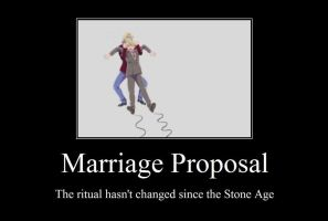 APH Demotivational: Marriage Proposal by Arciam