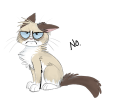Grumpy Cat by namiwami