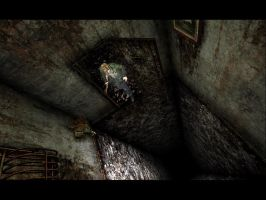 Silent Hill 2 Hole by ParRafahell
