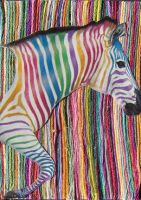 Zebra Collage ACEO by Ookiee