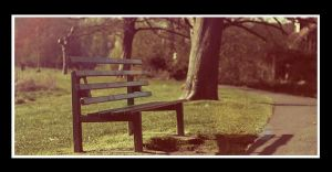 Park Bench by BenBrotherton