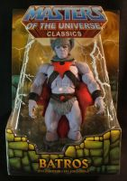 MOTUC custom Batros packaged by masterenglish