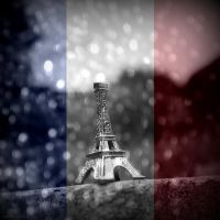 For Paris by lostknightkg