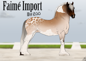 Faime Import 200 by bedfordblack