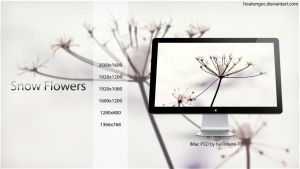 Snow Flowers wallpaper by hoatongoc