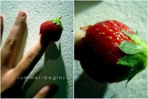Delicious little strawberry by Summer-Begins