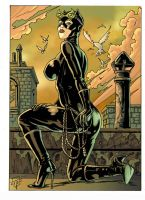 catwoman 2 Q by FTacito