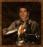 Brandon Routh as knight by TheRealImp