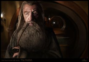 One hour movie still study: The hobbit by Suzanne-Helmigh