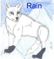 Rain Request by Flame22