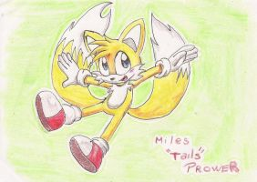 Miles Tails Prower by tantei-fox03