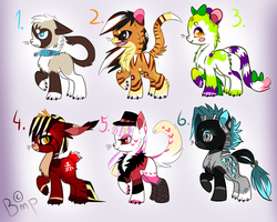 Catus-Pony Auction nr.4 (CLOSED) by AdoptionsBMP
