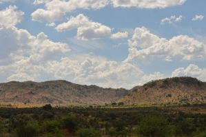 Pilanesberg 09 by RichardGeorgeDavis