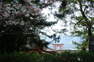 torii by mikanrock