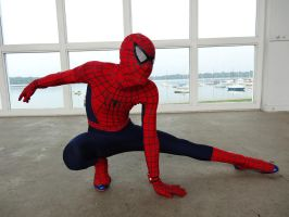 Spider-man Cosplay 1 by SpenceOlson
