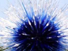 Blue Starburst - Chihuly Sculpture by bobtheenchantedone