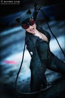 Catwoman - 04 by shiroang