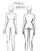 Female Anatomy by AtomicMangosAdopts