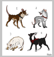 Adoptables - Ratdog CLOSED by Mikaley