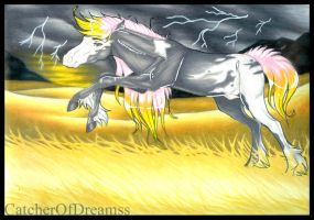 Thunder and the Lightening by CatcherOfDreamss