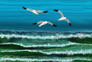 waves and seagulls by December012